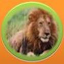 Kaswan Tours & Safaris